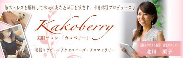 ヘッダー画像実績「Kakoberry」