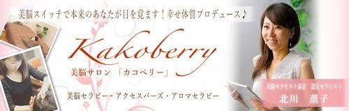 kakoberryheader2