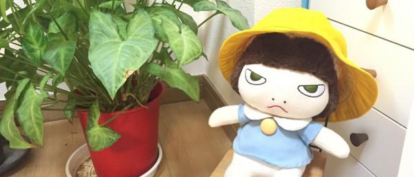 オーダーの帽子を被ったお人形